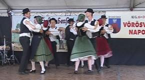 Schwabenfest 2013.