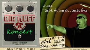 Big Muff koncert az Art Udvarban