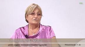 Pilisvörösvári képviselőjelöltek