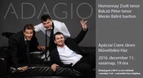 Adagio koncert Solymáron