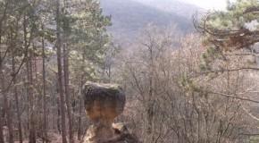Madarak és fák napja