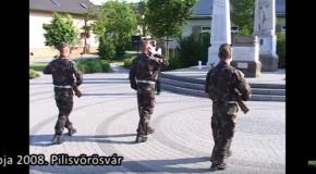 Hősök napja Vörösváron 2008. /archív/