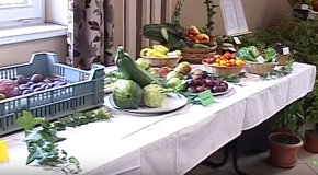 Vörösvári Napok – Kertbarát kör kiállításának megnyitója