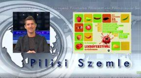 Pilisi Szemle 2017/38. hét