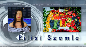 Pilisi Szemle 2019/30. hét